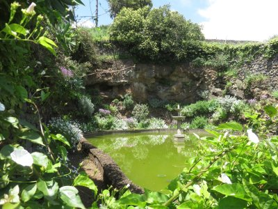 Petit étang du jardin botanique de Funchal - Madère