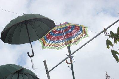 Les rues décorées de parapluies à Ponta Delgada - Madère