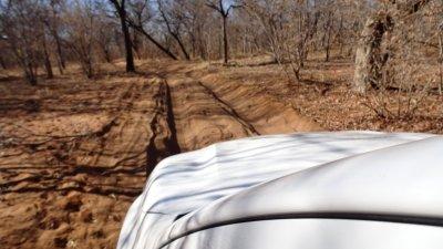 La piste très sablonneuse et profonde de la porte N'goma du parc national de Chobe - Botswana