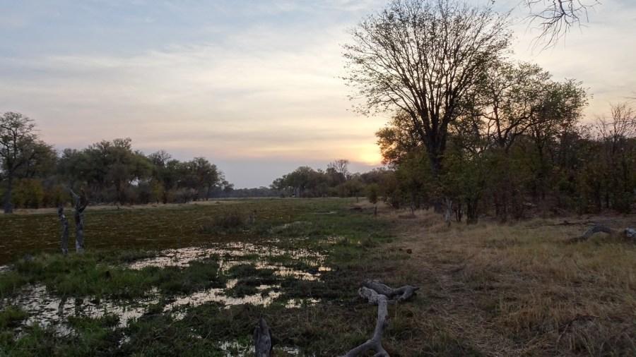 Coucher de soleil sur la rivière Khwai - Botswana