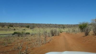 La piste du parc national de Chobe - Botswana