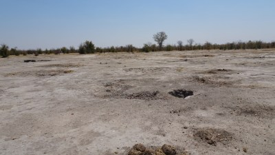 Potholes laissés par les éléphants - Botswana