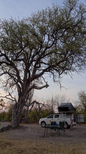 Au campsite de Mbudi au bord de la rivière Khwai - Botswana