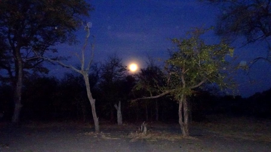 Pleine lune au campsite de Mbudi - Botswana