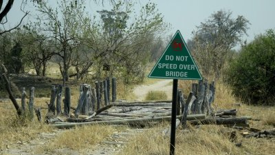 First Bridge - Réserve de Moremi (Botswana)