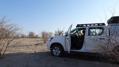 Au bord de la rivière Boteti - Makgadikgadi NP (Botswana)
