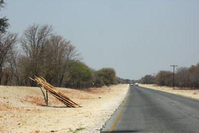 Sur la route de Maun depuis Shorobe - Botswana