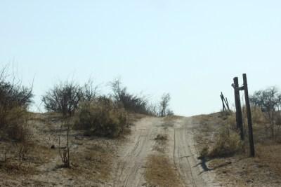 Sur la piste le long de la rivière Boteti - Makgadikgadi NP (Botswana)