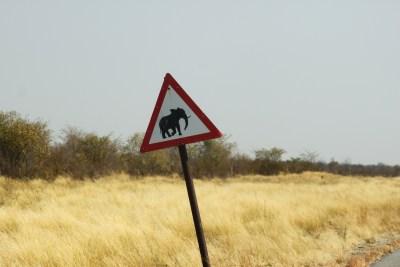 Panneau Eléphant sur la route entre Nata et Kasane - Botswana