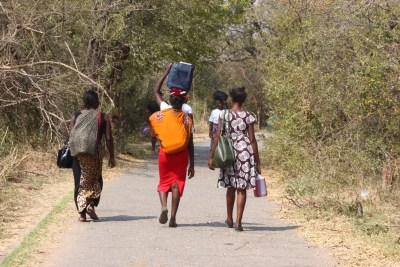 Retour vers la ville de Victoria Falls - Zimbabwe