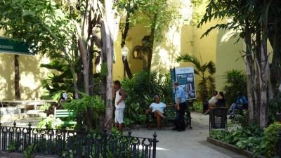 Petit jardin dans la vieille ville - La Havane (Cuba)