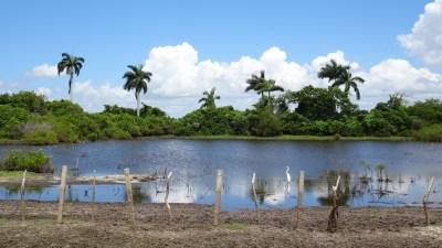 Etang dans la vallée de Vinales - Cuba