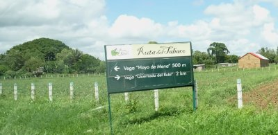 La route du tabac - Pinar del Rio (Cuba)