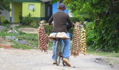 Un vendeur d'oignons et d'ail à Vinales - Cuba