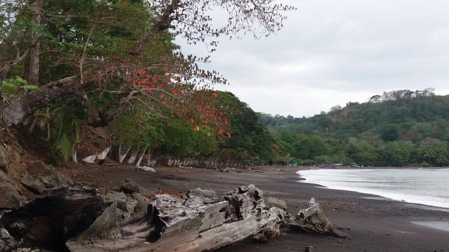 Plage le long de la route, à Tarcoles, près du parc National Carara - Costa Rica