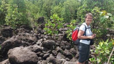 Aux abords du mirador du volcan Arenal - Costa Rica