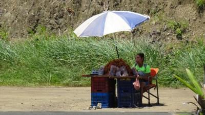 Marchande de fruits sur le bord de la route de Jaco - Costa Rica