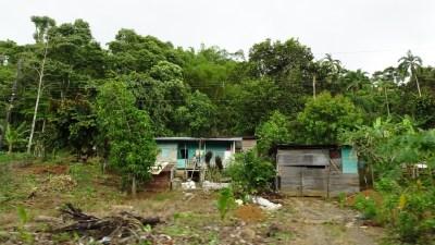 Habitations le long de la côte caraîbe avant Cahuita - Costa Rica