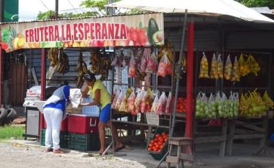 Primeur à El Roble - Costa Rica
