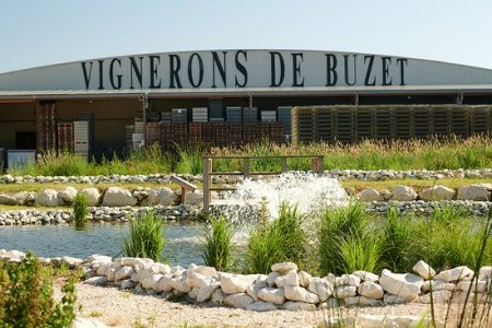 Le vin de Buzet-sur-Baïse
