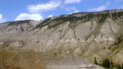 Tower Roosevelt - Yellowstone NP