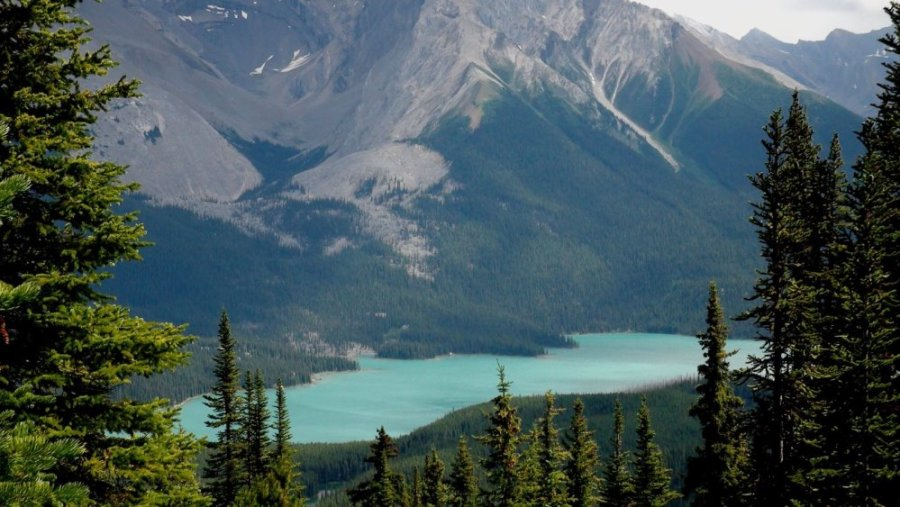 Le lac Maligne - Jasper NP - Rocheuses canadiennes