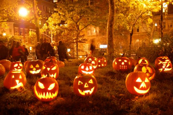 Halloween-Pumpkins-Field (New York)
