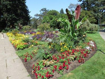 Beacon Hill Park - Victoria - île de Vancouver (Canada)