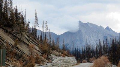 Jasper NP - Rocheuses canadiennes