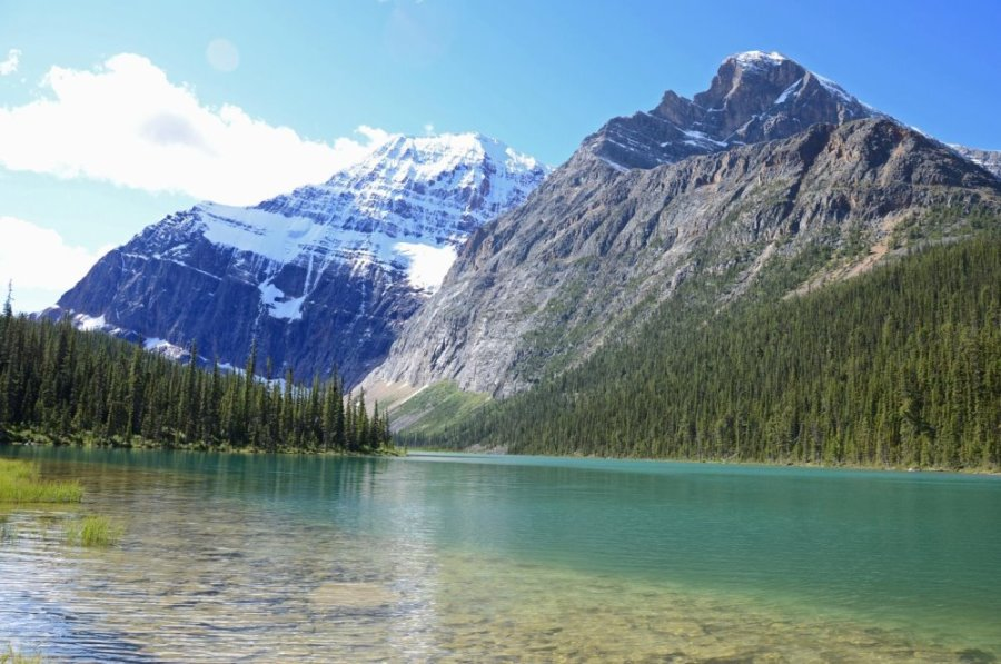 Mount Edith Cavell and Sorrow Peak Tower Above Cavell Lake
