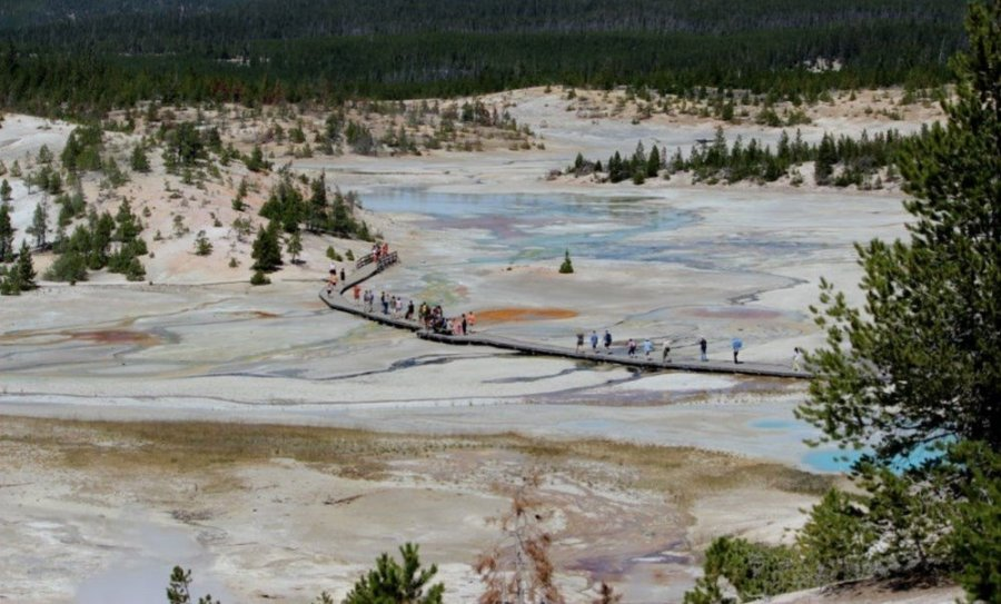 Norris - Porcelain Basin (Mammoth Hot Springs - Yellowstone NP)
