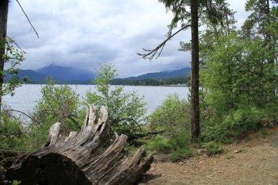 petroglyphs-sproat lake - île de Vancouver (Canada)