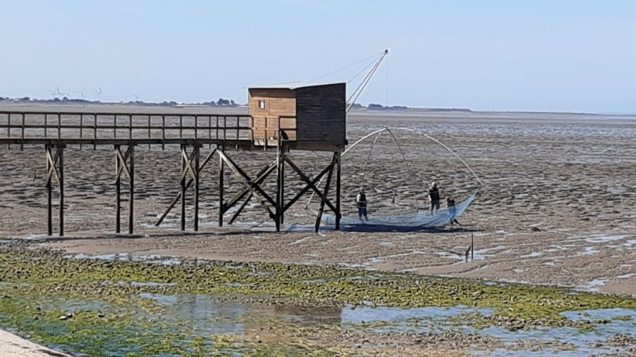 Les cabanes à Carrelet - Les Moutiers-en-Retz