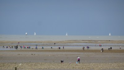 Pêcheurs à pieds le long de la côte en direction de La Bernerie-en-Retz