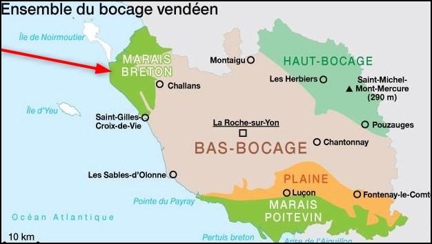 Le marais breton vendéen