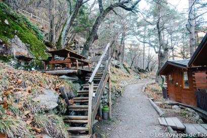 Cabanes dans les arbres Tende-21