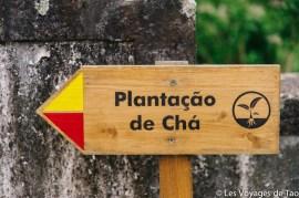 Les voyages de Tao Sao Miguel Açores-19