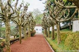 Les voyages de Tao Sao Miguel Açores-62