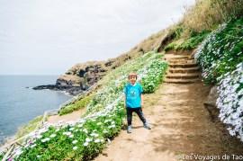 Les voyages de Tao Sao Miguel Açores-85