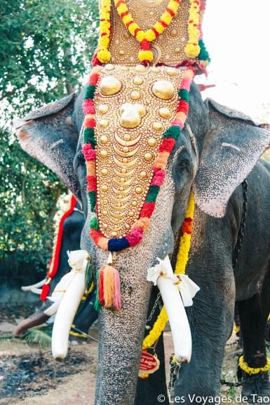 Les voyages de Tao voyage en Inde en famille-151