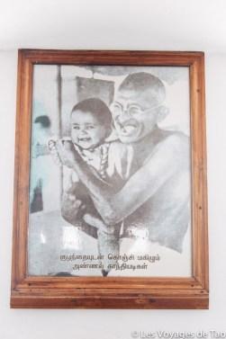Les voyages de Tao voyage en Inde en famille-266