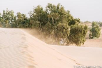 Les voyages de tao Désert de Lompoul-13