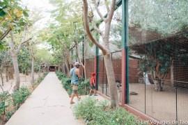 Les voyages de tao Sénégal-4