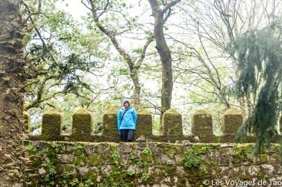Les voyages de tao Sintra-18