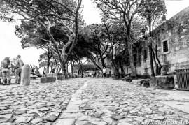 Les voyages de tao lisbonne_-21