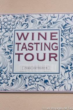 Wine tasting tour Barolo