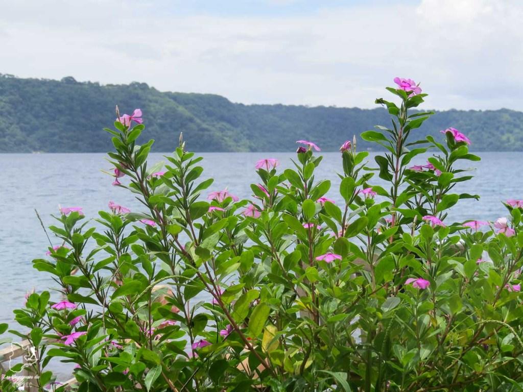 La laguna Apoyo dans mon article Mon voyage au Nicaragua en 10 coups de cœur et incontournables à visiter #nicaragua #voyage #ameriquecentrale #apoyo