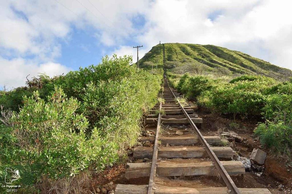 Koko head trail sur l'île d'Oahu dans notre article L'île d'Oahu à Hawaii : Activités incontournables à faire lors d'un road trip #oahu #roadtrip #ile #kawaii