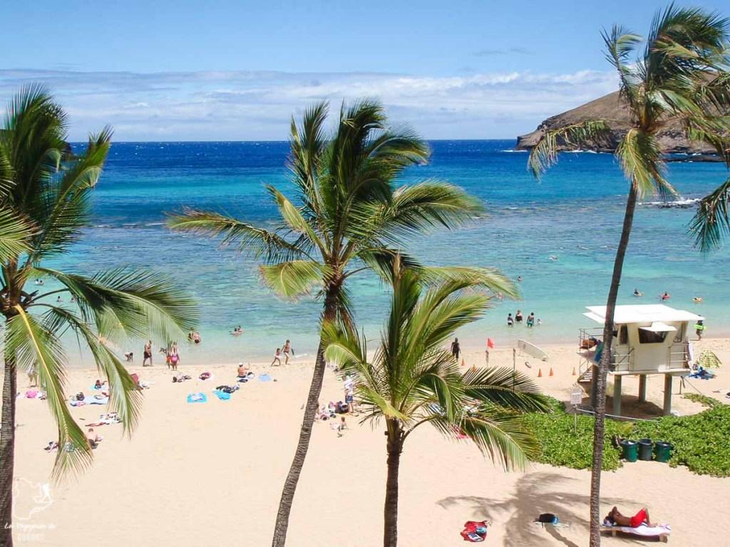 Hanauma Bay sur l'île d'Oahu dans notre article L'île d'Oahu à Hawaii : Activités incontournables à faire lors d'un road trip #oahu #roadtrip #ile #hawaii #hanauma