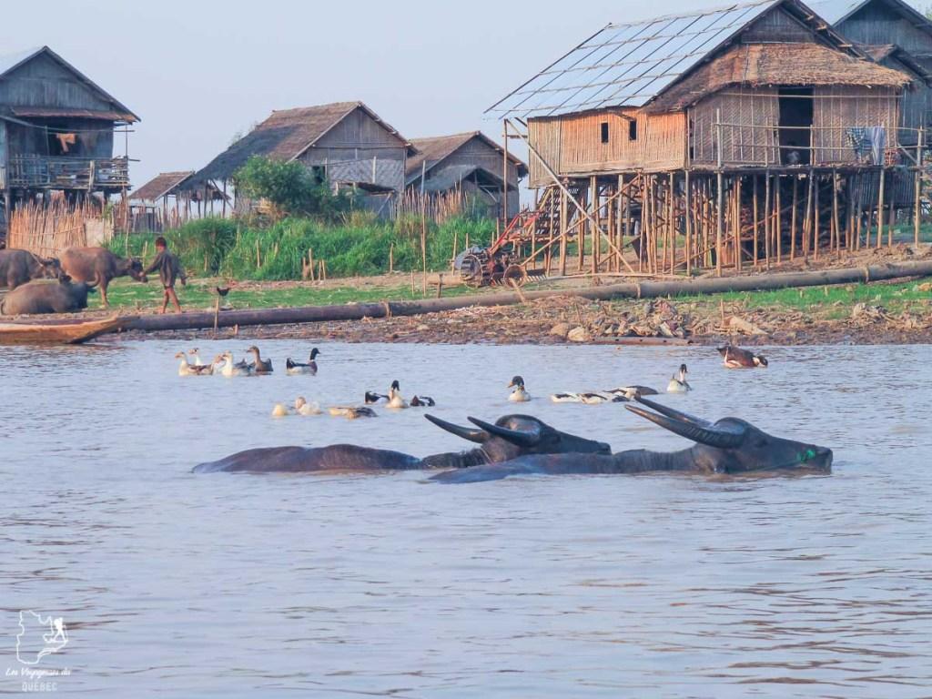 Village authentique sur le Lac Inle dans notre article Voyage au Myanmar : Mes expériences et lieux à visiter au Myanmar #myanmar #birmanie #asie #voyage #itineraire #lacinle